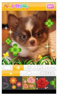 Petcamera- screenshot thumbnail