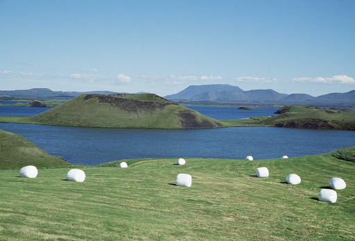Hay bales in the hills of Iceland.
