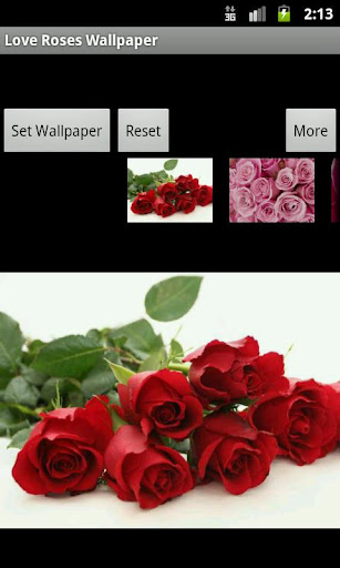 Love Roses Wallpaper