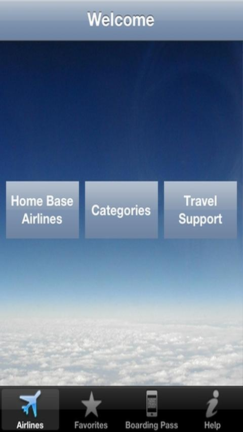 Airline Flight Check-In World- screenshot