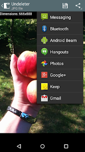 Undeleter for Root Users - screenshot thumbnail