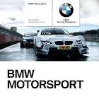 BMW Motorsport icon