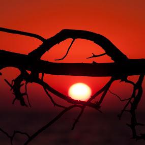by Jorgos Kleidas - Landscapes Sunsets & Sunrises