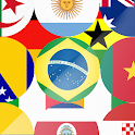 Flag World 2014 icon