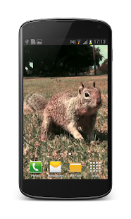 Little Squirrel 3D Wallpaper - screenshot thumbnail