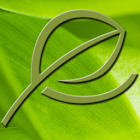 Verde Salon & Day Spa icon