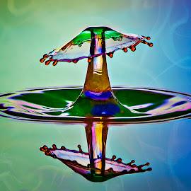 Liquid Mushroom by Chandra Irahadi - Abstract Water Drops & Splashes ( mushroom, liquid sculpture, macro photography, good, beauty, yellow, multicolored, lights, colour, macro art, fresh, indonesia, splendid, artistic objects, cool, water, water drops, macrophotography, green, umbrella, mood, fun, colours, water art, boletus, blue, artistic, artificial, conceptual, mushrooms )