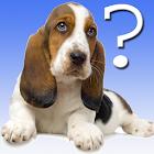 Erraten die Hunderasse icon