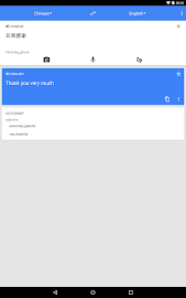 Google Translate Screenshot 2