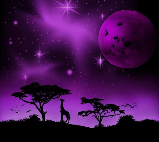 Imaginary africa-violet.LWP