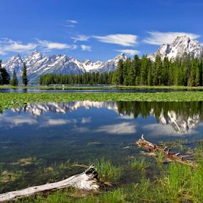On the Shore Jackson Lake by Gerard Pascazio - Landscapes Mountains & Hills