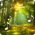 Forest Sounds icon