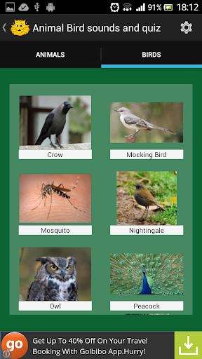 Animal Bird Sounds Jigsaw quiz