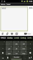 Screenshot of Romanian Keyboard Plugin