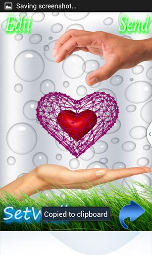 Lovely Net 3D Heart