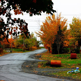 My Home Town. by Geoff Gosse - City,  Street & Park  Neighborhoods ( fall colors, newfoundland, hdr, fall, spaniard's bay )