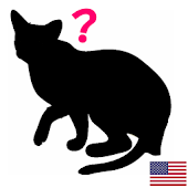 Animal Silhouette Quiz EN