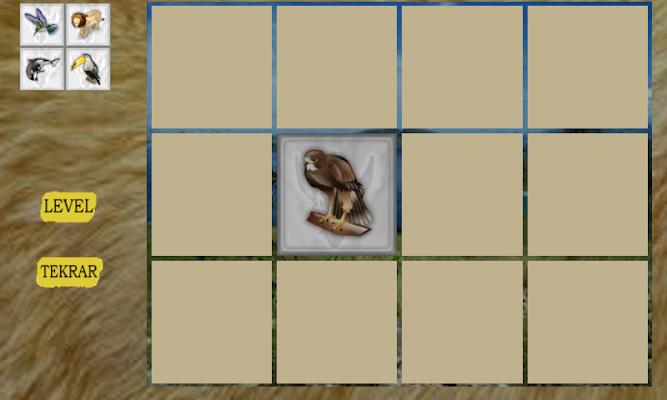 Memory Enhancement Game - screenshot