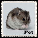 Pet Wallpapers LWP