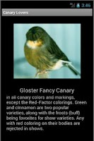 Screenshot of Canary Lovers