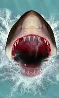 Screenshot of Shark Attack Live Wallpaper