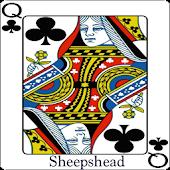 Sheepshead