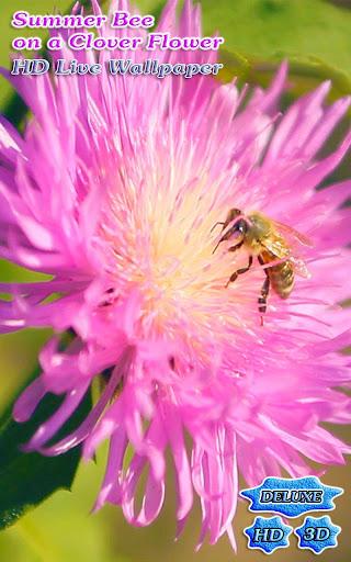 Summer Bee on Clover Flower 3D