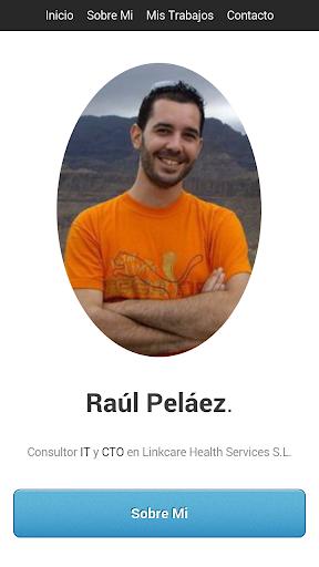 Raul Pelaez - Consultor IT