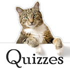 Cat Trivia icon
