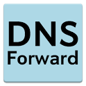 DNS Forward icon