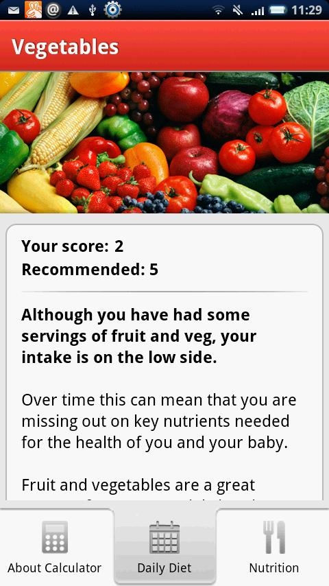Pregnancy Diet Calculator - screenshot
