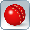 Practice Cricket icon