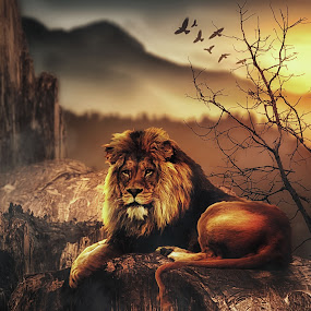 Lion Mountain by Karazy Shooke - Digital Art Animals ( lion, mountain, yosemite, digital art, manipulation )