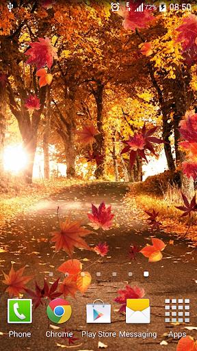 秋天動態桌布