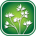 1250 Alberta Wildflowers icon