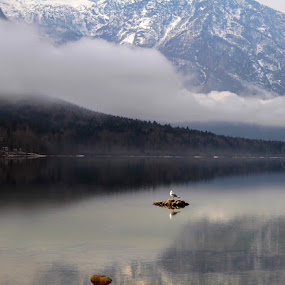 The Ombudsman lake! by Jože Borišek - Landscapes Weather ( bohinj-slovenia )