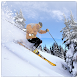 Ski info