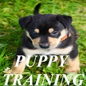 Puppy Training! icon