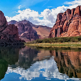 Along the Colorado by Patti Reddoch - Landscapes Travel