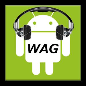 WAG Summary