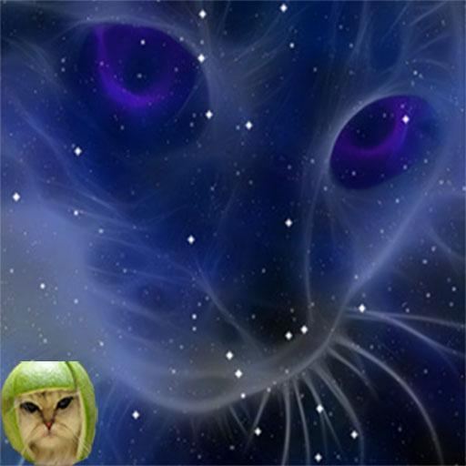 Melon Cat Multiplication