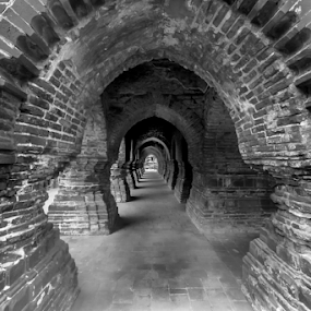 the magic of bricks in monochrome by Debasis Banerjee - Buildings & Architecture Places of Worship ( bishnupur, west bengal, heritage of bengal, terracotta temple, hindu temple, tourist place, india, bengal architecture )