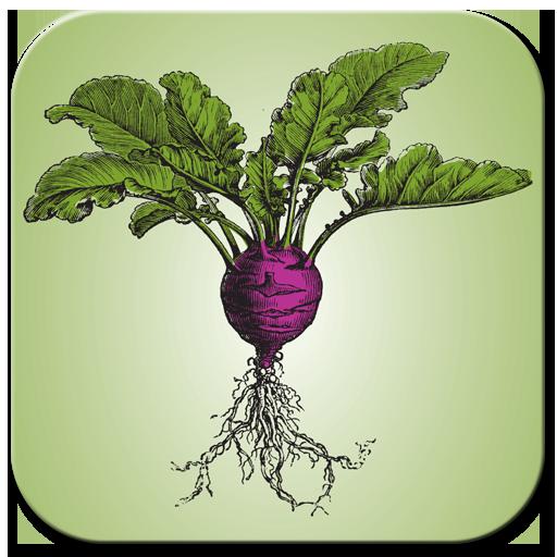 健康必備App|Roots Natural Foods LOGO-綠色工廠好玩App