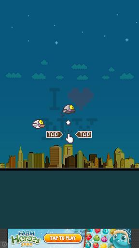 NYC Pidgeon