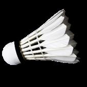 BadmintonStar
