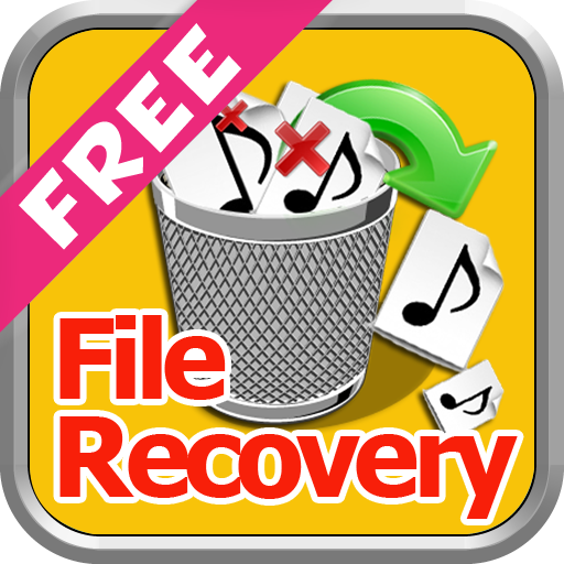 Deleted File Recovery Guide