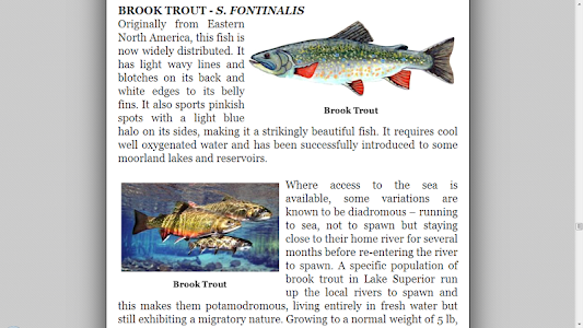Fly Fishing Encyclopedia screenshot 11