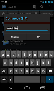 File Manager DroidFS screenshot 3