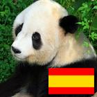 Animals in spanish icon