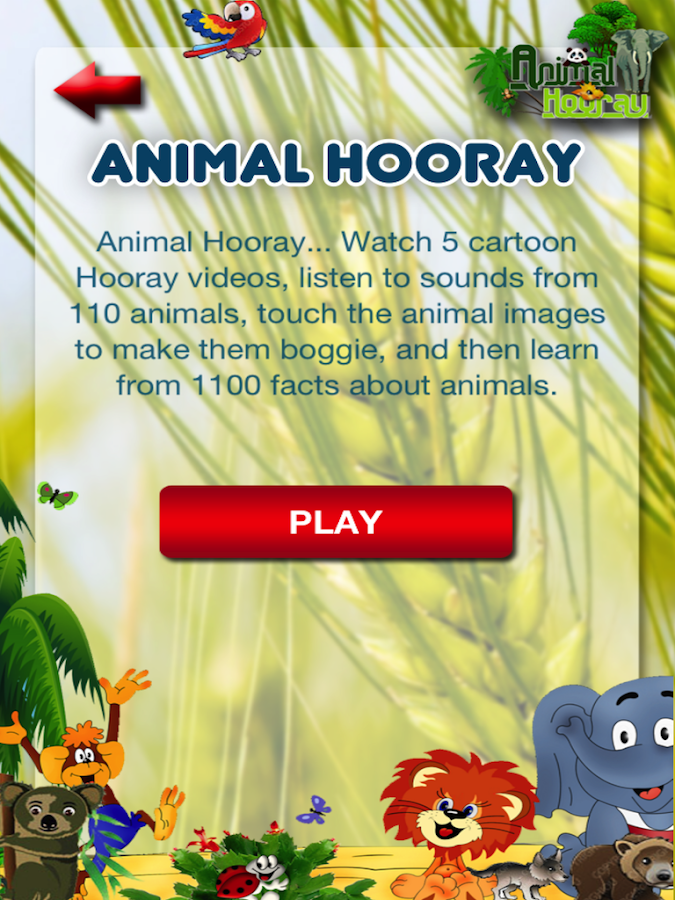 Animal Hooray: Sounds_Videos- screenshot